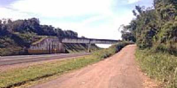 Viaduto próximo à Tronco-Foto:renwysocki