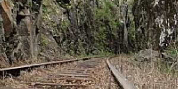 Ferrovia em União da Vitória-PR-Foto:Sofia kawka do Prado