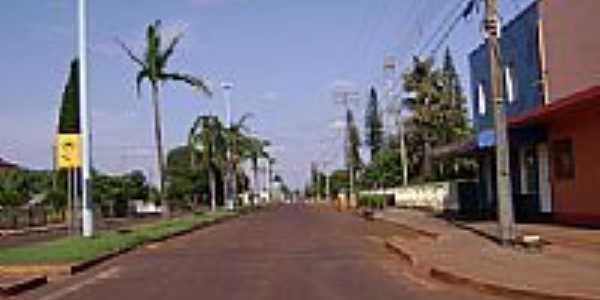 Avenida em Vila Nova-Foto:Artemio C.Karpinski
