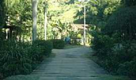 Amparo - Amparo-RJ-Ponte de madeira-Foto:Eder Sales