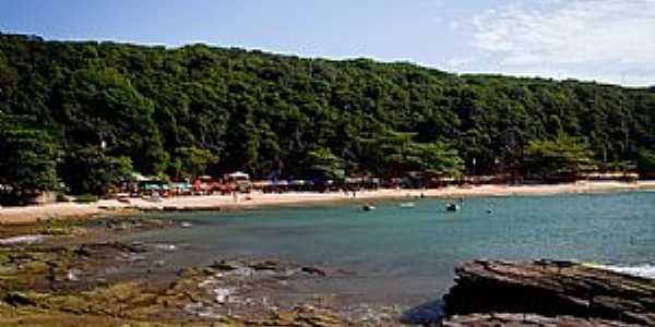 Praia da Tartaruga Árvores e barracas oferecem boas sombras Foto: Editoria Búzios On Line / Anna Fischer