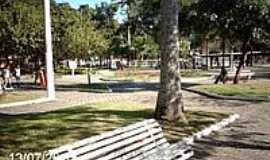 Conceição de Macabu - Praça Dr.José Bonifácio Tassara em Conceição de Macabu-Foto:Sergio Falcetti