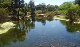 Itagua�u da Bahia - Lago no Povoado Rio Verde em Itagua�u da Bahia-BA-Foto:T�ssio Cunha