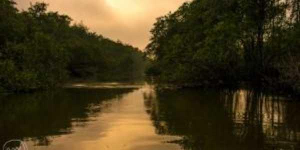 Pantanal Fluminense, Por Rafael Coelho