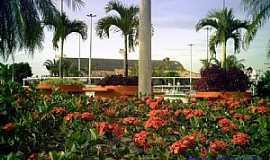 Itagua� - Itagua�-RJ-Flores na Pra�a Municipal Jos� Pereira Dutra-Foto:Tony Borrach