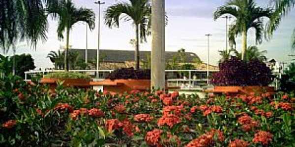 Itagua�-RJ-Flores na Pra�a Municipal Jos� Pereira Dutra-Foto:Tony Borrach