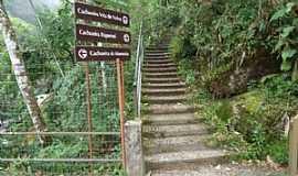 Itatiaia - Itatiaia-RJ-Escadaria para as trilhas das cachoeiras do Parque Nacional-Foto:www.verdejava.com.br