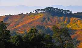 Itatiaia - Itatiaia-RJ-Parque Nacional de Itatiaia-Foto:kilsonRJ