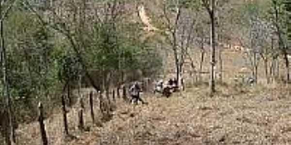 Trilha em Jaguarembé-Foto:trilheiro.