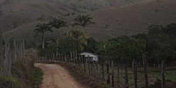 Fazenda Palmital-Foto:Ubiratam C de Paula