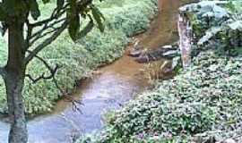 Mangaratiba - Serra do Piloto foto por PUGA2008