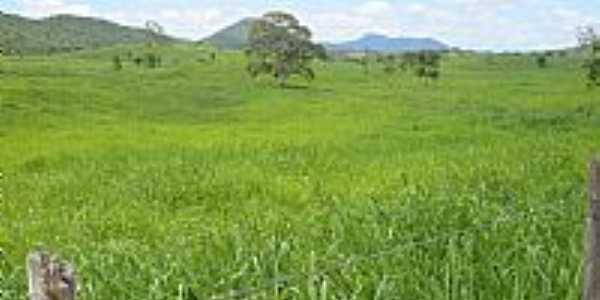 Itaju do Colônia-BA-Fazenda Volta do Ouro-Foto:fabio9158