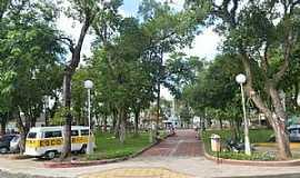 Quatis - Imagens de Quatis - RJ Foto Prefeitura Municipal