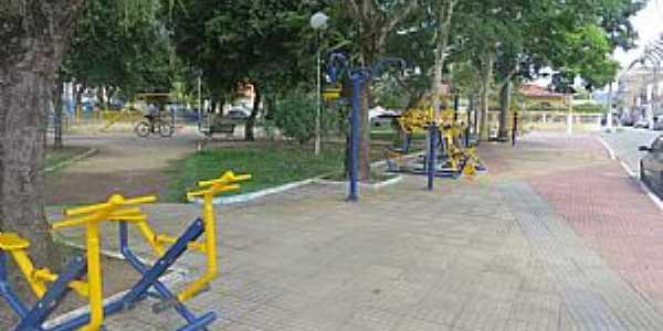 Imagens de Quatis - RJ Foto Prefeitura Municipal