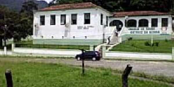 Saracuruna foto Leonardo S. Oliveira