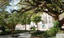 Valença - Centenário flamboyant de Santa Isabel, Por Mércia Silva