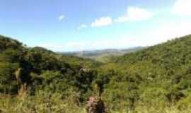 Valença - Pratedo das embaúbas na serra em Juparanã, Por Mércia Silva