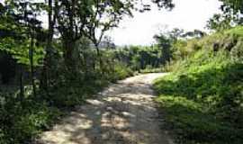 Vargem Alegre - Á caminho da cascata-Foto:Edna Barros