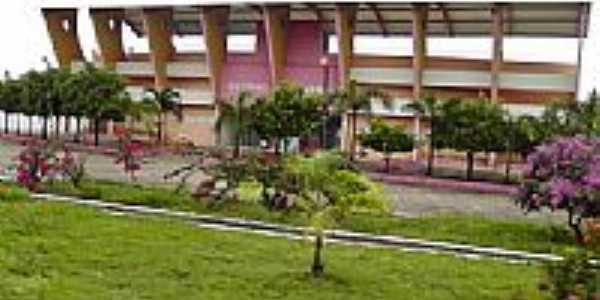 Entrada do Estádio de Antônio Martins-Foto:Dedé de Zé Luca