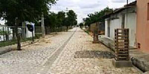 Rua do Povoado Baixa do Caic em Apodi-RN-Foto:Marcos-DF