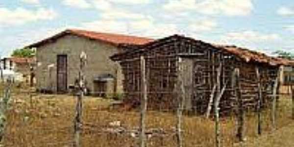 Casas em área rural-Foto:bandeiracientifica.com.br