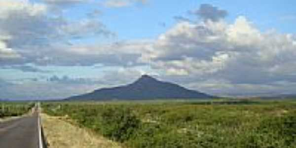 Vista do Pico do Cabugi - Km 164