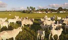 Goianinha - Área Rural de Goianinha - RN