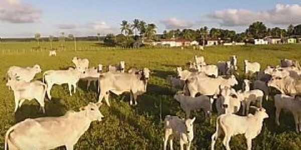 Área Rural de Goianinha - RN