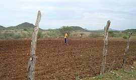 Ipiranga - Ipiranga-RN-Sertanejo preparando a terra-Foto:Ewerton