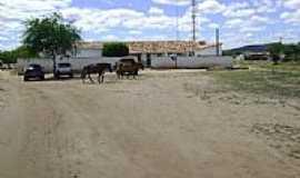 Itaquaraí - Área rural-Foto:nilson ferreira andr…