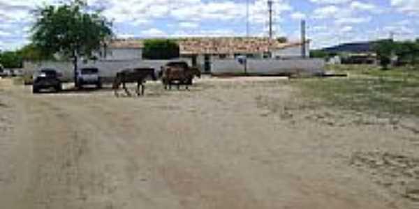 Área rural-Foto:nilson ferreira andr…