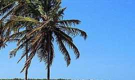 Natal - Natal-RN-Praia de Maracaja�