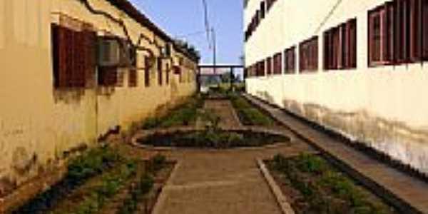 Área interna da UERN em Pau dos Ferros-Foto:Rogerpicarete