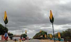 Riacho da Cruz - Avenida com decoração Junina em Riacho da Cruz-RN-Foto:Walter Leite