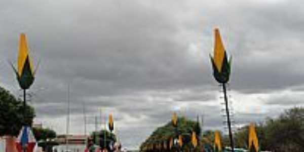 Avenida com decoração Junina em Riacho da Cruz-RN-Foto:Walter Leite