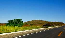 Riachuelo - Riachuelo-RN-Rodovia BR-304-Foto:Wilson Alcaras