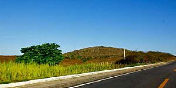 Riachuelo-RN-Rodovia BR-304-Foto:Wilson Alcaras