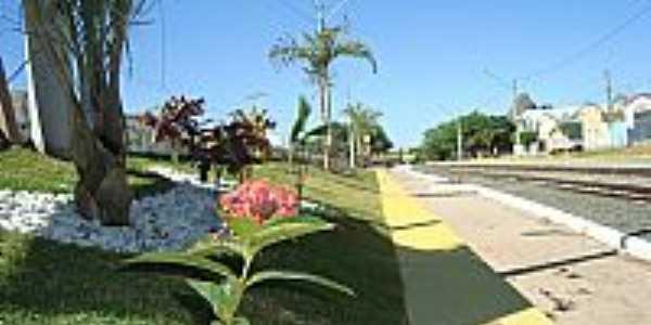 Itatim-BA-Jardim na linha férrea-Foto:EFUSÃO