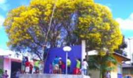 Serrinha dos Pintos - Praça Genilson Araújo, Por GARDENIA