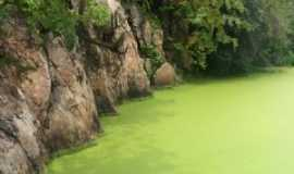 Tenente Ananias - Paredões no lago da cachoeira do Mororó, Por Anailza Feitoza dos Santos