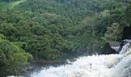 Ituberá - Do alto da Cachoeira de Pancada Grande em Ituberá-BA-Foto:brunolhas