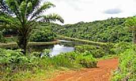 Ituberá - Lagoa Santa em Ituberá-BA-Foto:Pestana