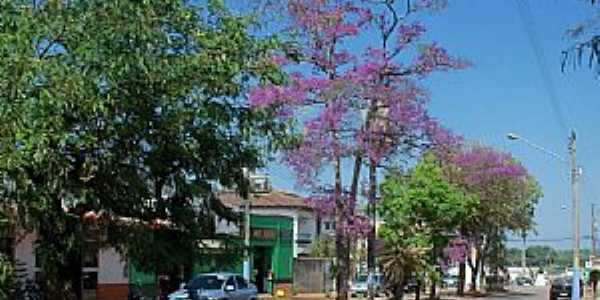 Guajará Mirim-RO-Avenida florida-Foto:Julio de Ramos