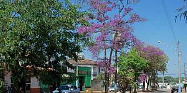 Guajar� Mirim-RO-Avenida florida-Foto:Julio de Ramos