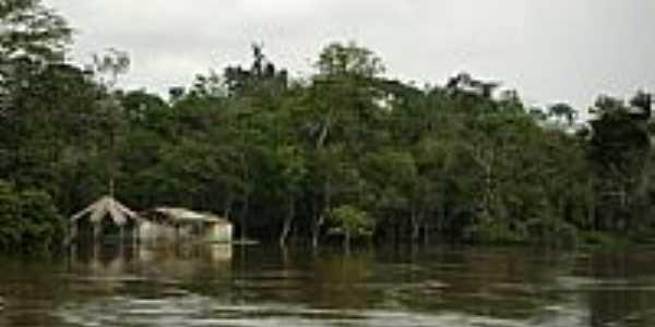 Rio Jaci Paraná