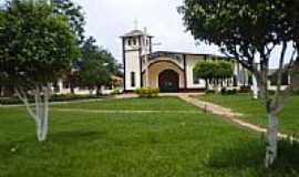 Seringueiras - Igreja Católica por marisley