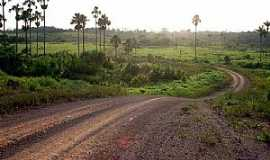 Alto Alegre - Alto Alegre-RR-Estrada em área rural-Foto:Tiago Orihuela