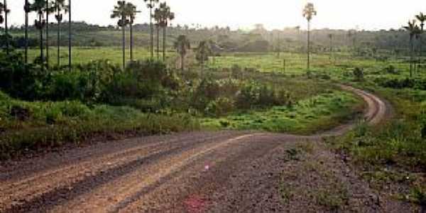 Alto Alegre-RR-Estrada em área rural-Foto:Tiago Orihuela