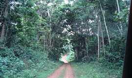 Caracaraí - Caracaraí-RR-Trilha Ecológica do Bem-Querer-Foto:Jeav
