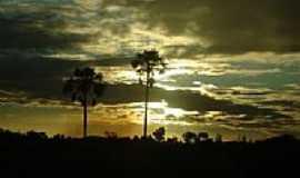 Normandia - Pôr-do-Sol nas Savanas